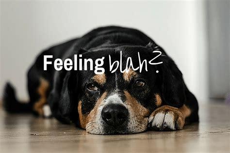 Feeling Blah